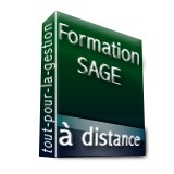 http://www.logiciels-du-batiment.com/638-783-thickbox/formation-sage-comptabilite-analytique-a-distance-2h.jpg