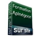 Formation ApiBâtiment Etats Comptables et fiscaux / Sur Site - Achetez au meilleur prix sur Tout-pour-la-gestion.com