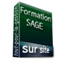 Formation Sage Comptabilité Générale sur site - Achetez au meilleur prix sur Tout-pour-la-gestion.com